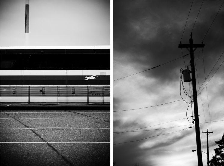 LINES: LAND, SKY