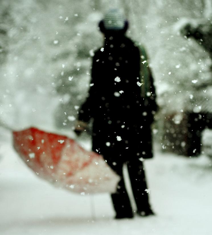 SNOW-DAY REDUX NO.2
